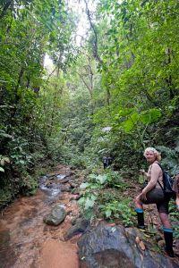 Blog-Cherrie-trek