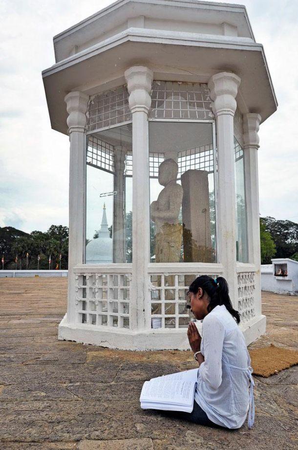 Blog--Polonnaruwa-38