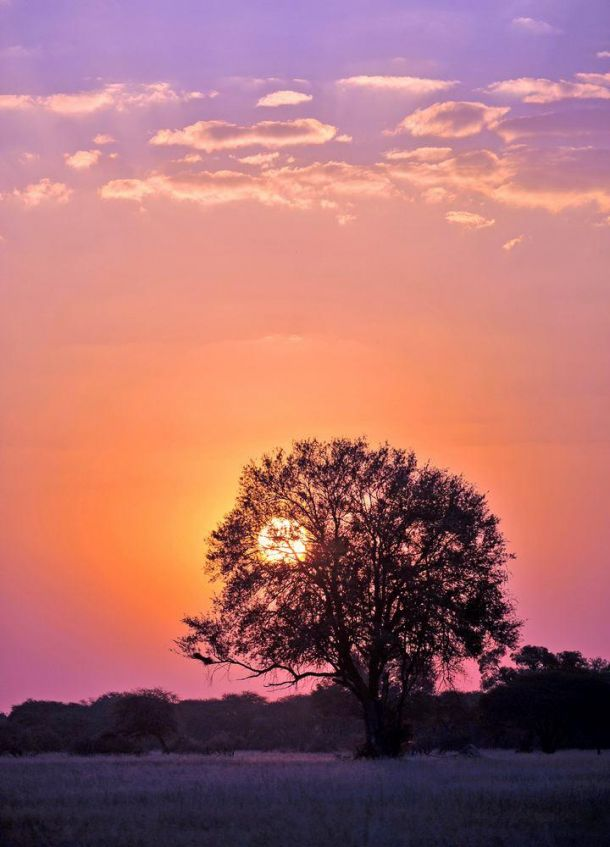 Hwange sunset 4