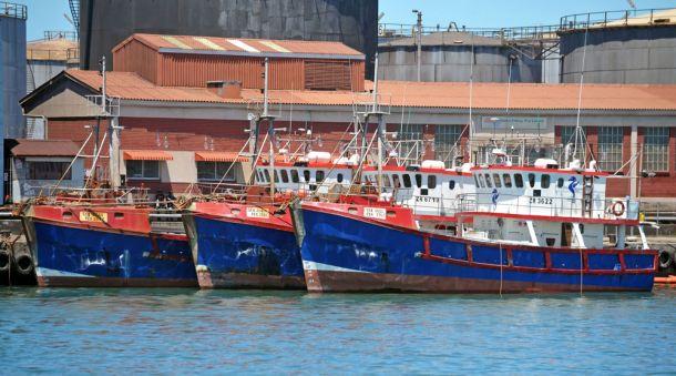 South-Africa,-Port-Elizabeth,-Fishing-fleet