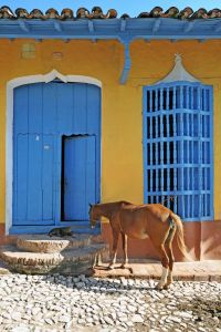 Trinidad - old town - tethered horse at doorway- Cuba