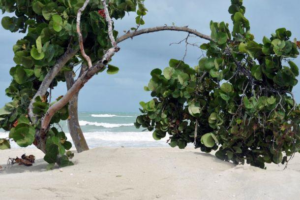 Varadero - beach scene - Cuba