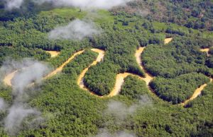 Meandering river, Costa Rica