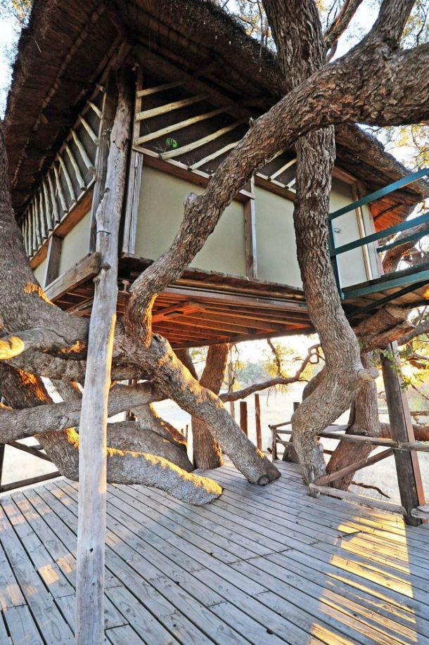 The Hide tree house 1