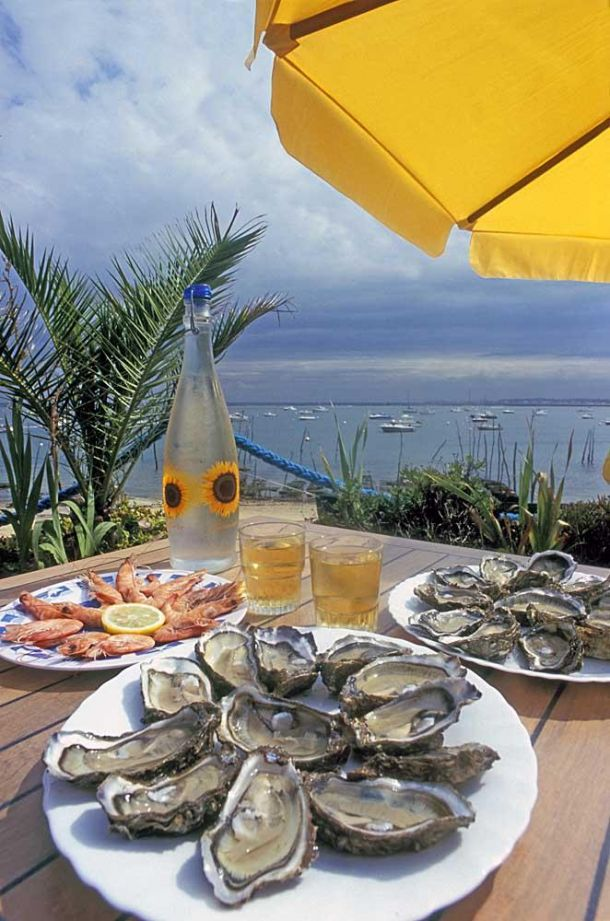 Oysters under umbrella