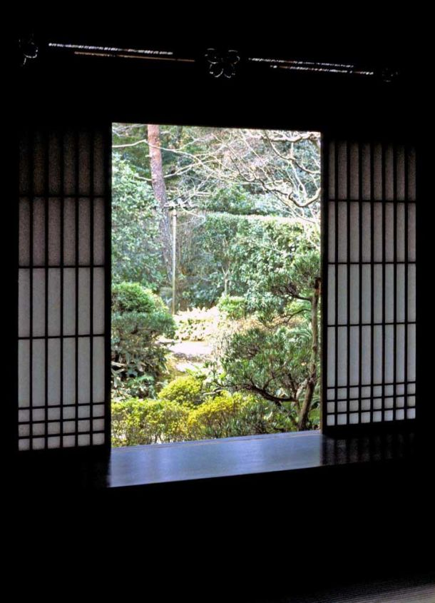 View of garden from inside