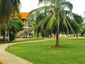 Uga garden view