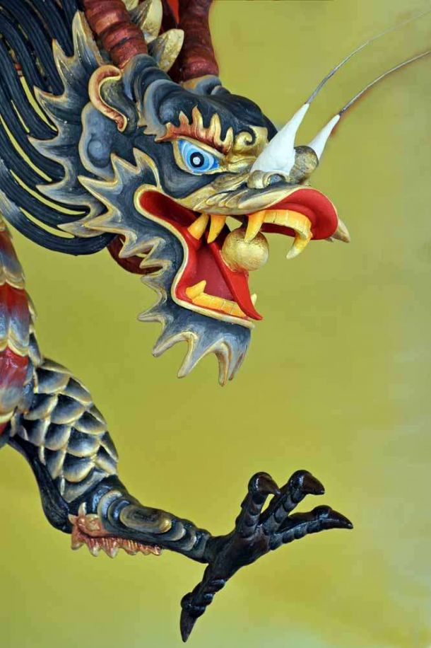TLC Temple Dragon