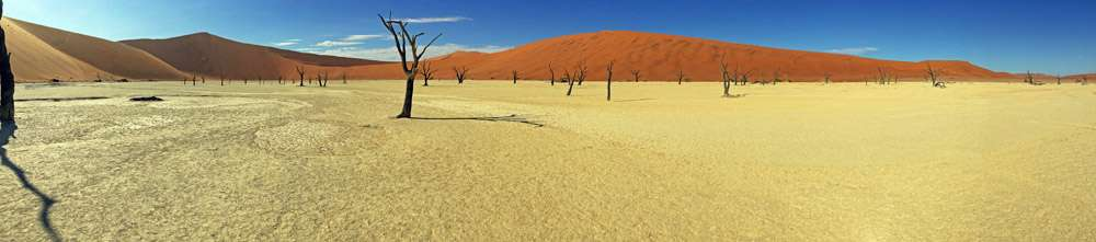 TLC Deadvlei panorama