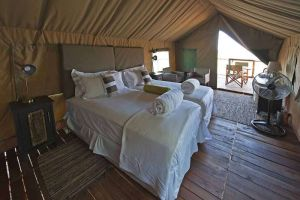TLC Etosha - Eagle Tented Lodge 9