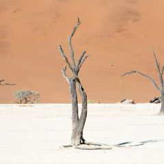 Top ten unusual places to visit in Namibia