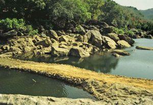 TLC sonbadra bridge2