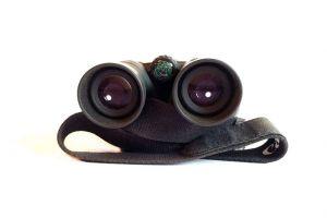 Canon bins ocular