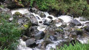 TLC Peulla – Waterfall 2