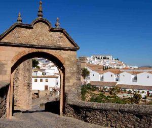 TLC Andalucia 1 037