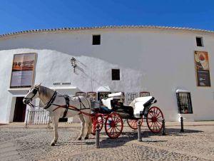 TLC Andalucia 1 060