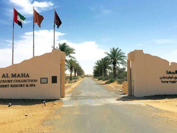 Al Maha 4
