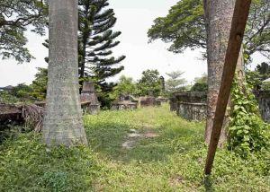 TLC Cochin - Dutch cemetery