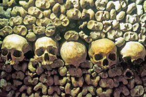 TLC Catacombs 1