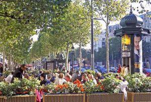 TLC Champs Elysees