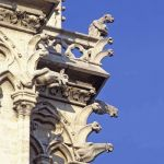 TLC Notre Dame 2