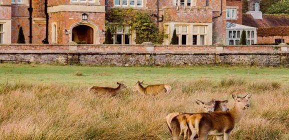 To the Burley Manor borne
