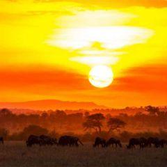 The very best of East Africa – Zanzibar, Kenya & Tanzania