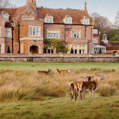 TLC Burley manor Front