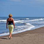 TLC Tortuguero beach